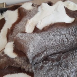 Goatskin Rugs
